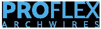 logo-proflex_1.png